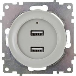 OneKeyElectro Розетка USB двойная, с подсветкой серый